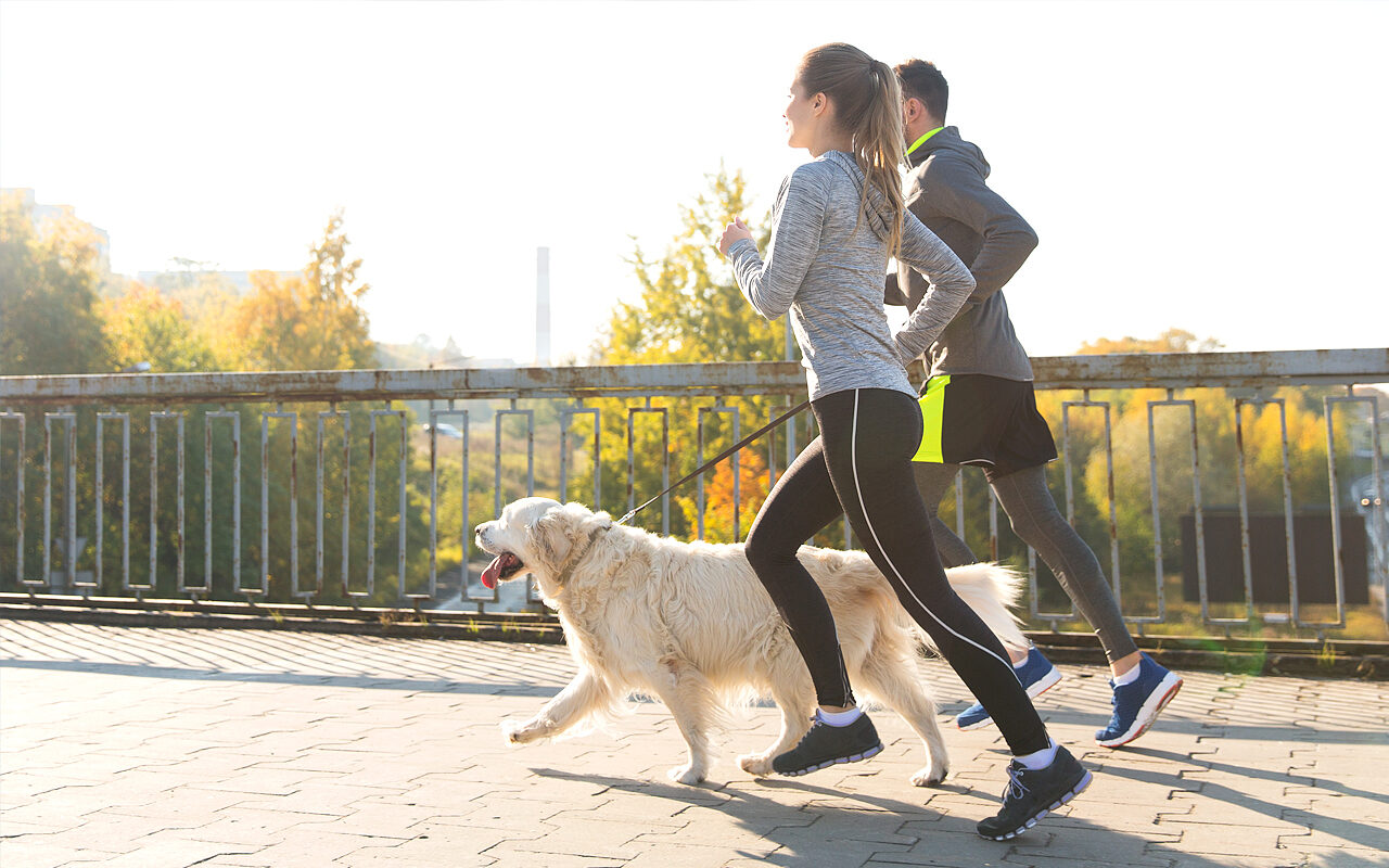 Correr con nuestro perro