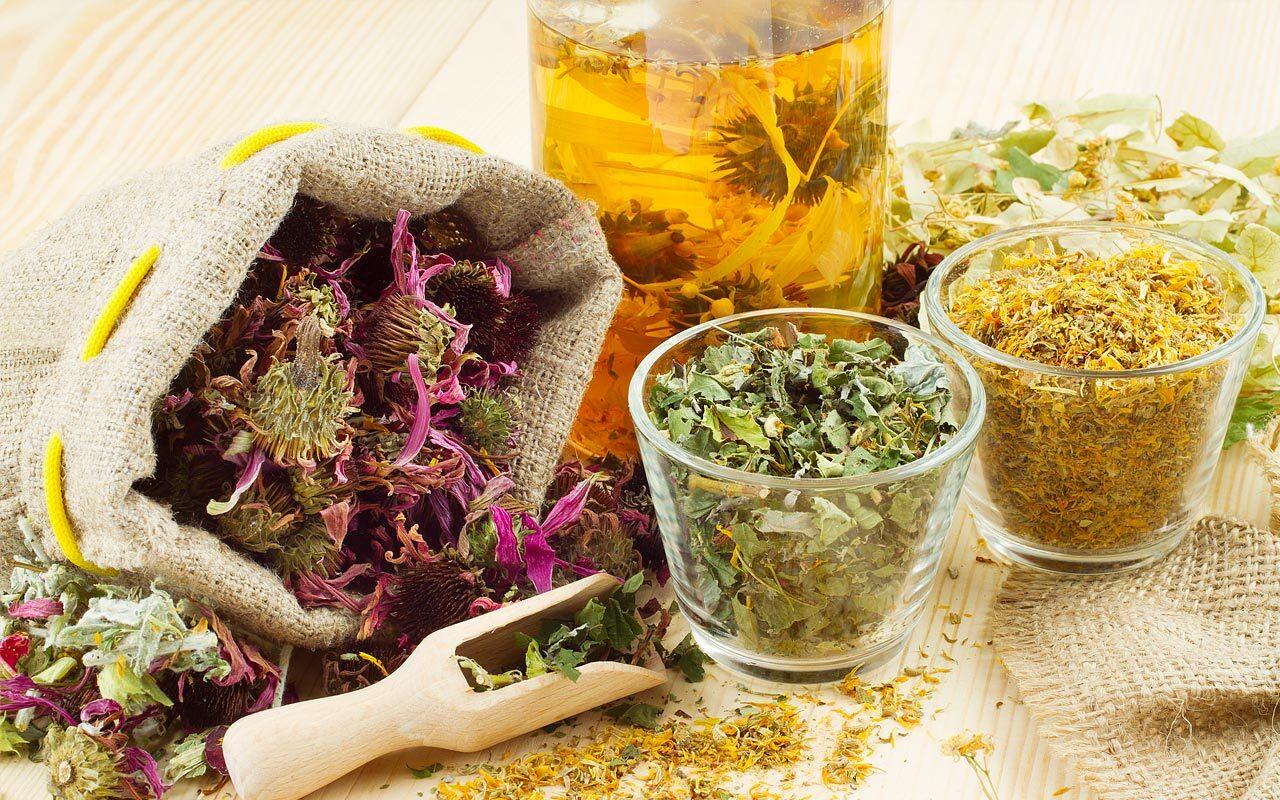 Plantas que calman el intestino